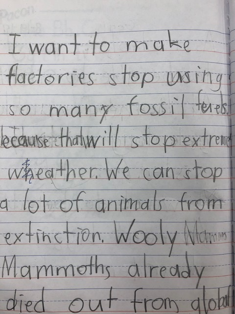 Second Grade Dream Writing