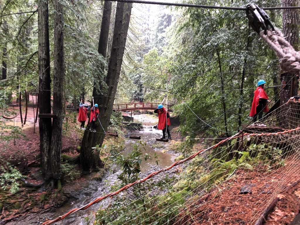 Students on challenge course over creek.